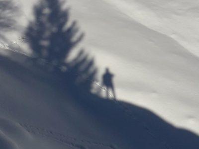 Fotografie della Val Ferret e Val Veny